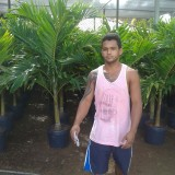 Gilton Carlos